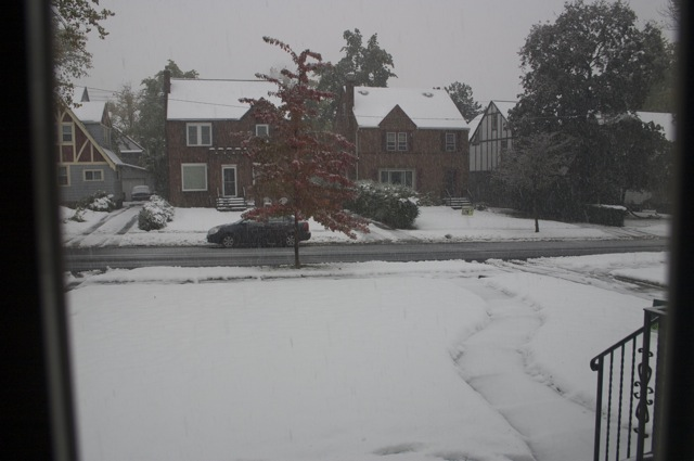 Snowing again around 2pm (Oct. 24, 2013)